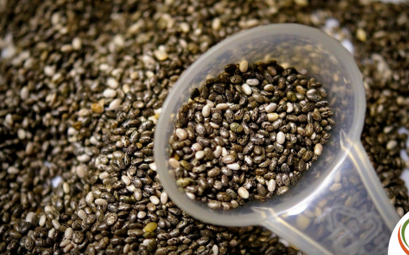 Chia Seeds – What Makes Them So Nutritious?
